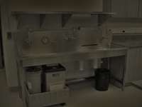 Image of Darkroom tray processing sink in simulated darkroom lighting conditions